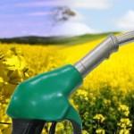 biopaliwa-6